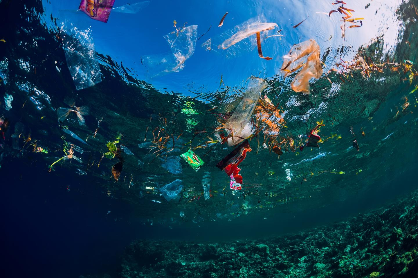 Mountains of plastic waste wash into the ocean every year, and we face a big battle to clean up the mess