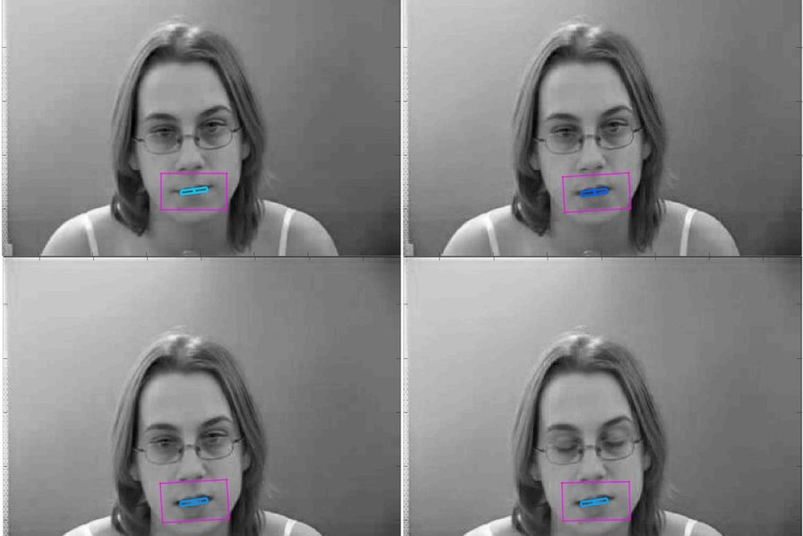 The scientists have already developed a 3D mouth-tracking algorithm