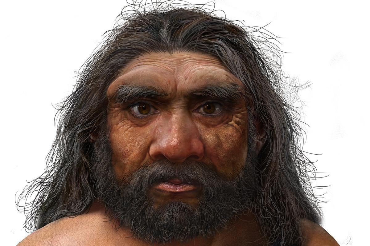 An artist's impression of the newly described human species, Homo longi
