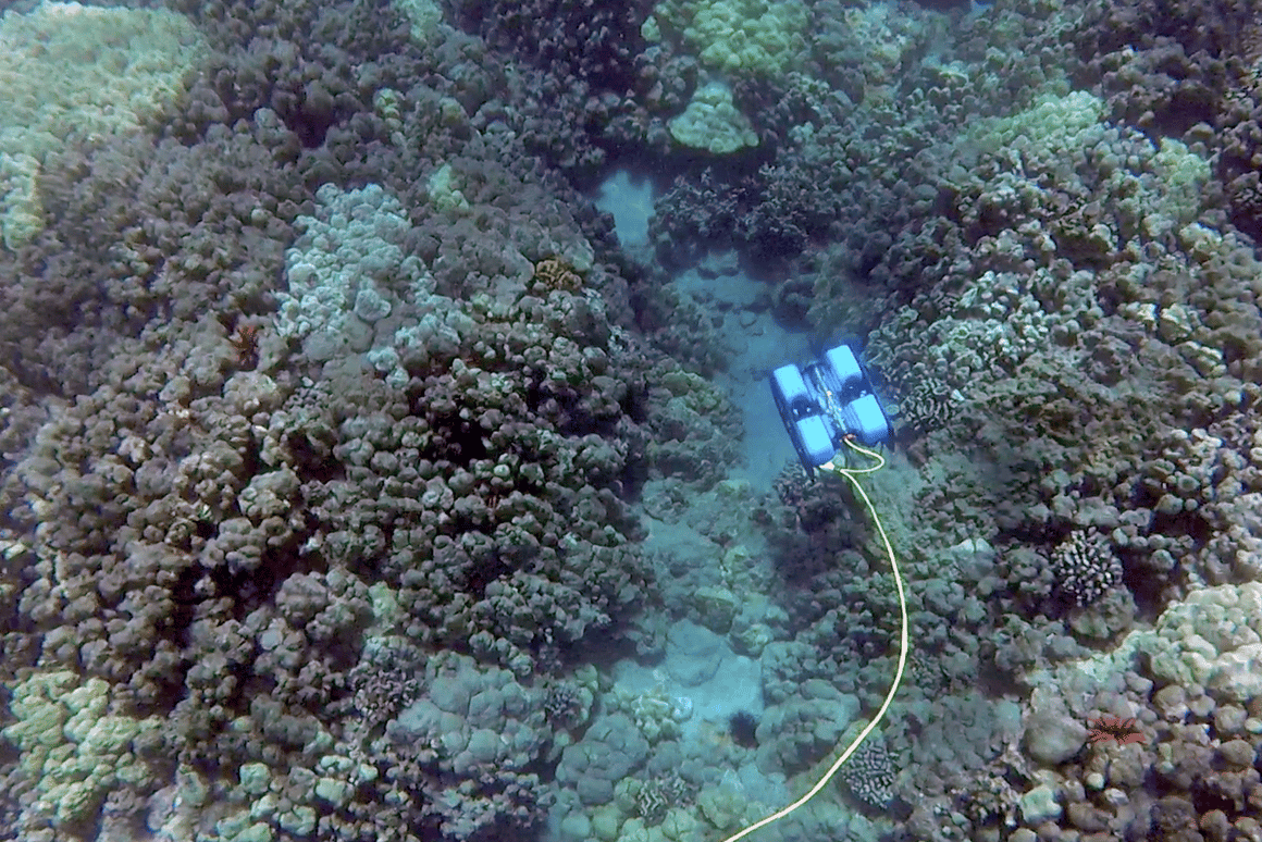 The BlueROV2 can descend to a depth of 100 m (328 ft)