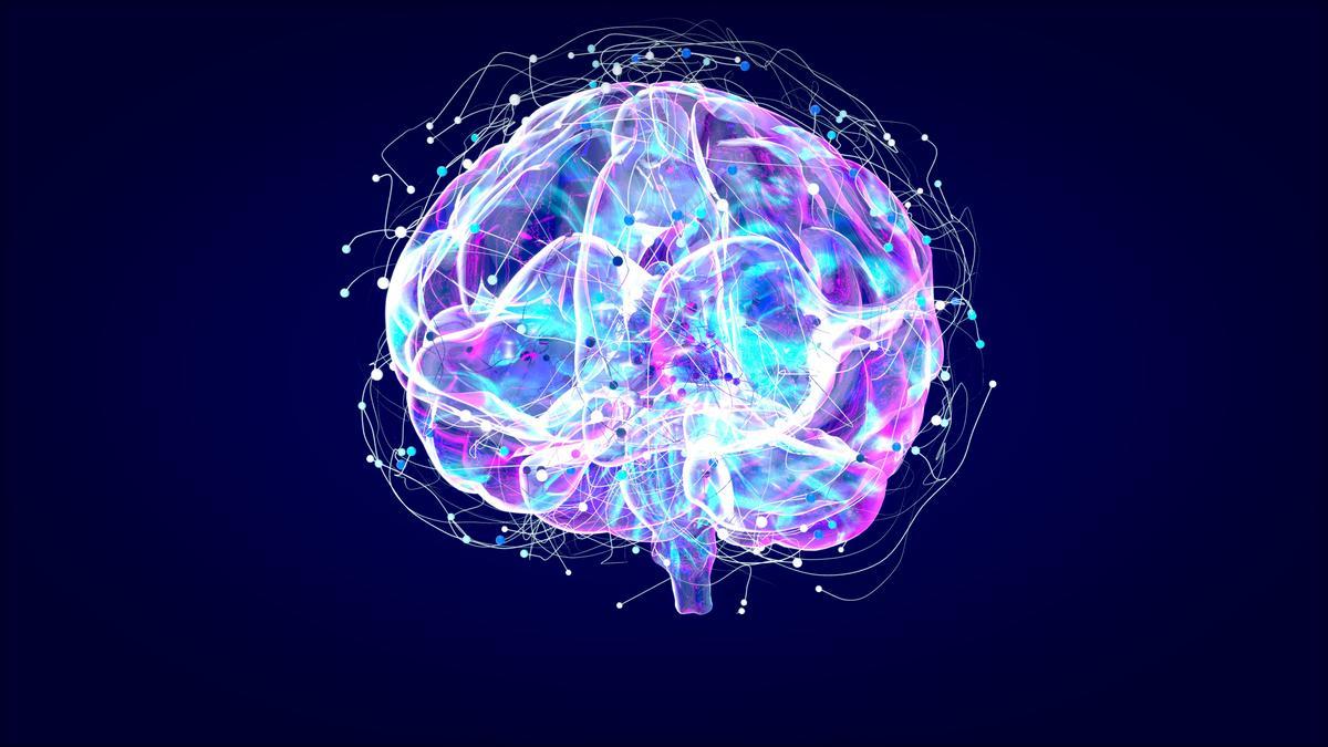 Brain xray, human anatomy, 3D Illustrated neurons