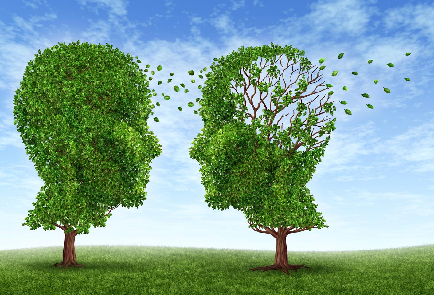 Ten risk factors, including head trauma, obesity in latelife, and diabetes, have been identified as the strongest risk factors for Alzheimer's in a new study