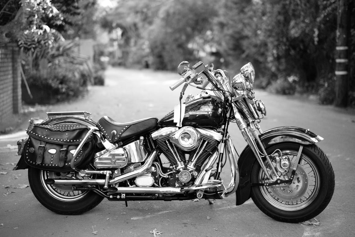 Hallyday's Harley
