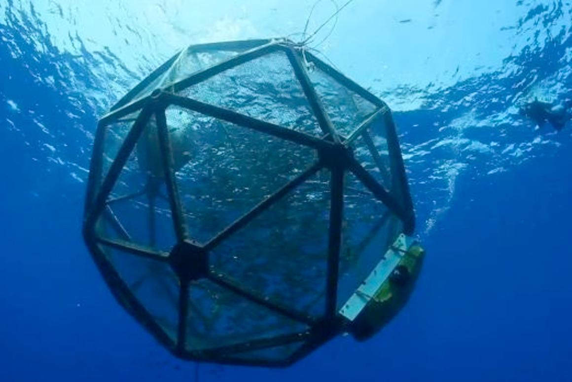 The Velella Research Project's Aquapod, adrift off the coast of Hawaii