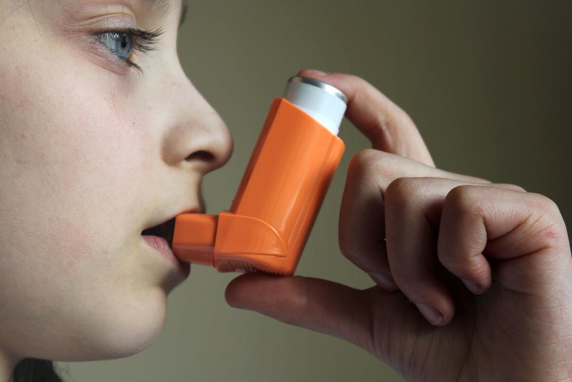 The humble asthma inhaler may be relegated from lifeblood of treatment to a mere backup device if research into allergen delivery inhibitors continues to bear fruit (Photo: Shutterstock)
