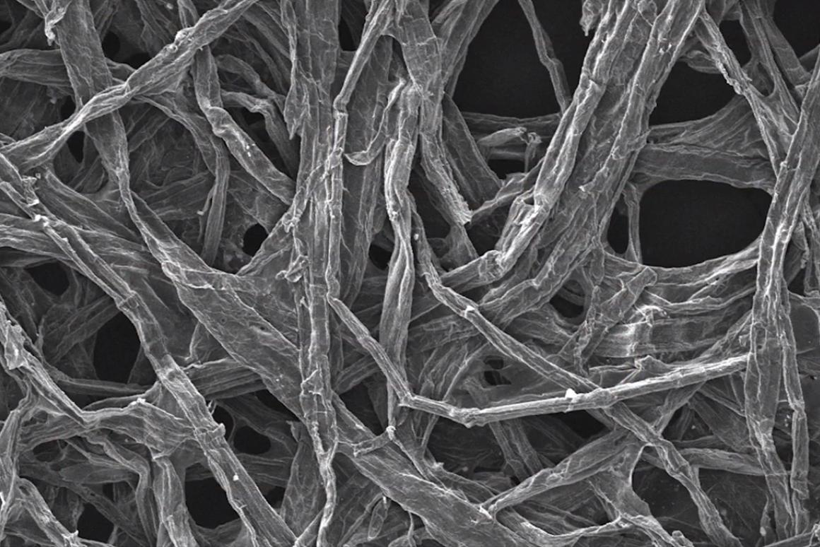 A closeup of the wood fibers used by the researchers in their sodium-ion battery (Image: University of Maryland)