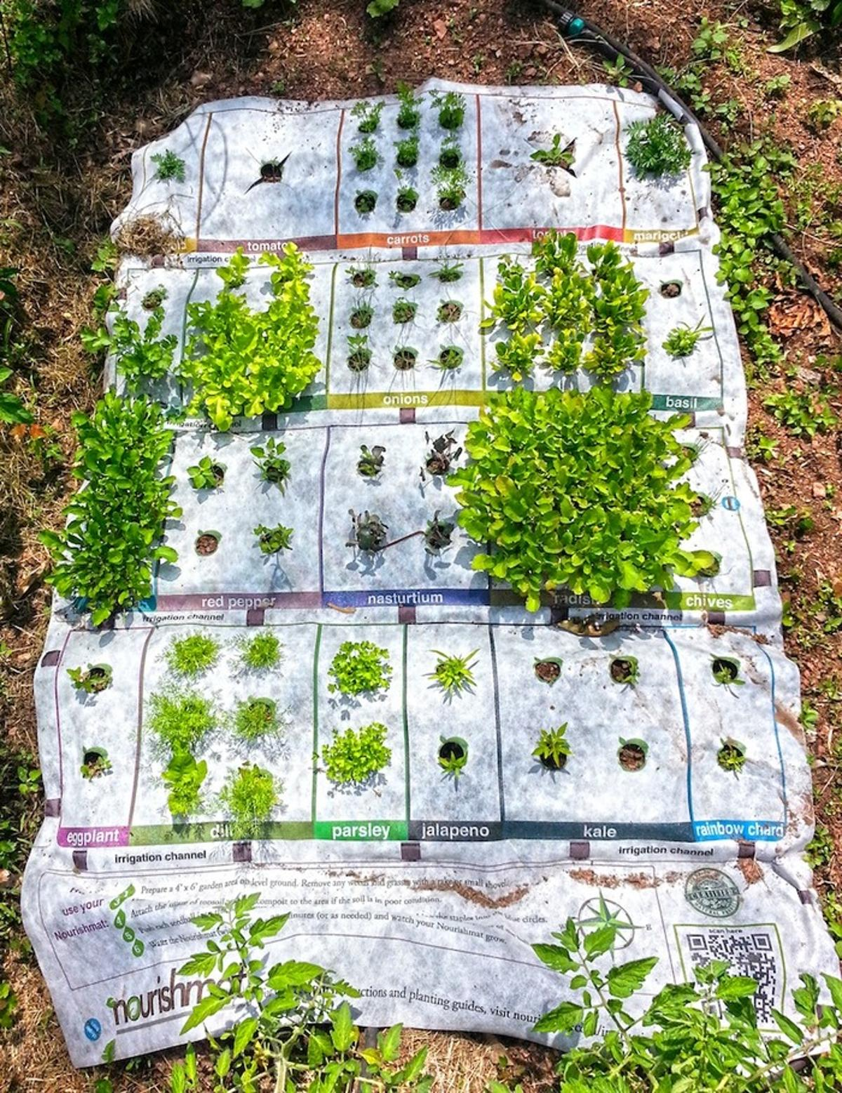 The Nourishmat is designed to let inexperienced gardeners grow their own vegetables in small spaces