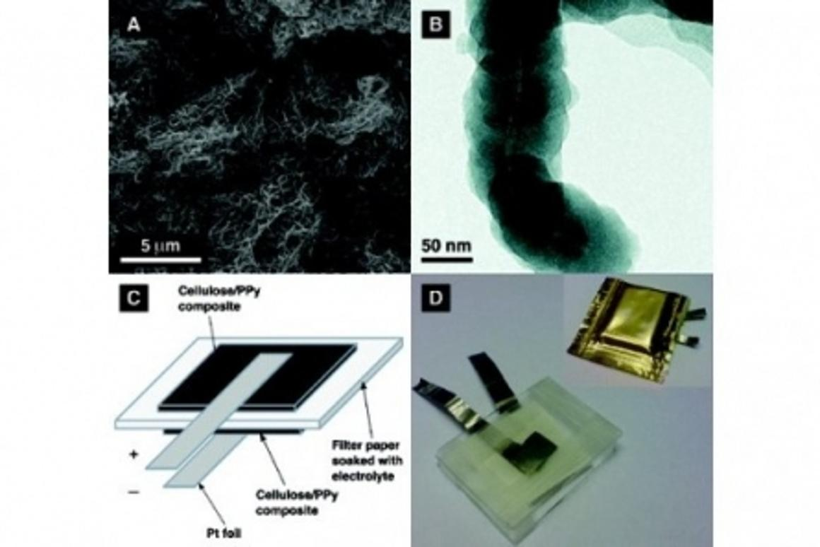 The battery is produced by coating the algae with a thin layer of polypyrrole (Images: Gustav Nystrom, Aamir Razaq, Maria Strømme, Leif Nyholm, Albert Mihranyan)