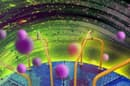 Dark matter particles, in the form of ultralight bosons, could sap angular momentum in the same way as jumping on and off a carousel does