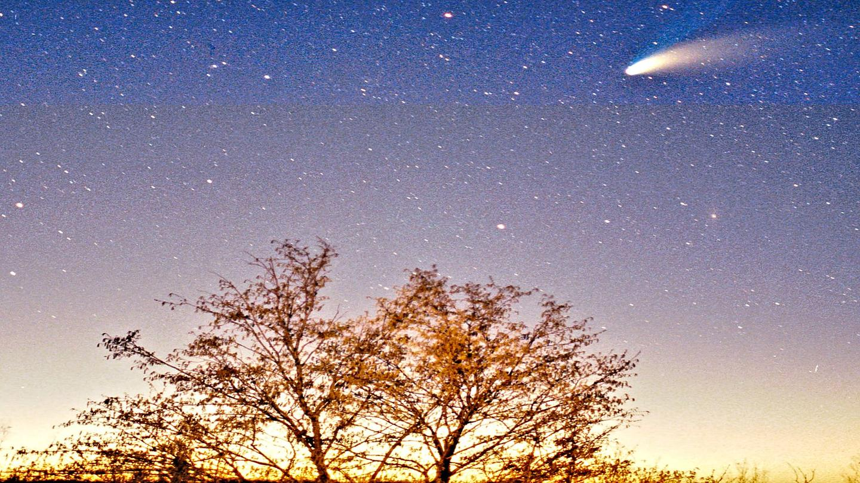 Comet Hale-Bopp in March 1997 (Photo: Philipp Salzgeber)