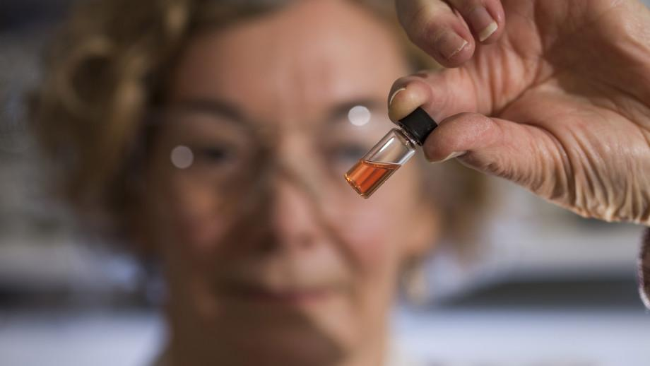 """A vial of the pink compounds, which at 1.1 billion years old,represent the oldest intact """"colors"""" in the fossil record"""