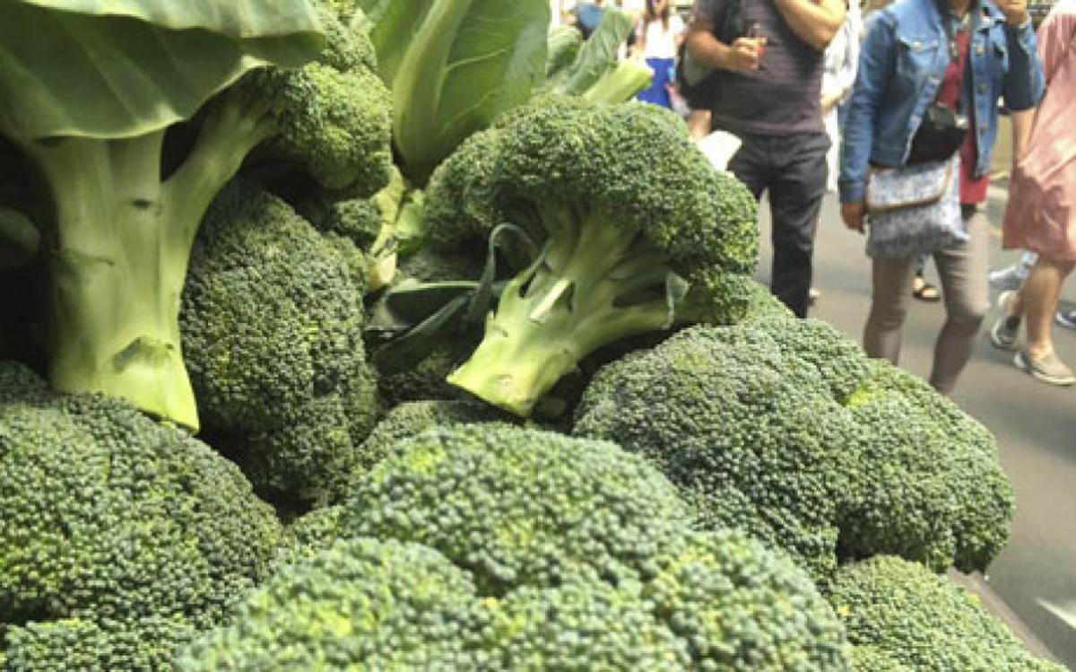 If a promising new study lives up to expectations, doctors might soon be prescribing a pill containing an antioxidant found in broccoli to obese patients with Type 2 diabetes