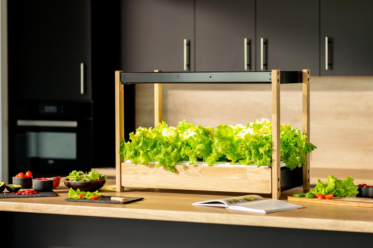 The Click & Grow 25 system promises year-round crops without needing to dig in the dirt