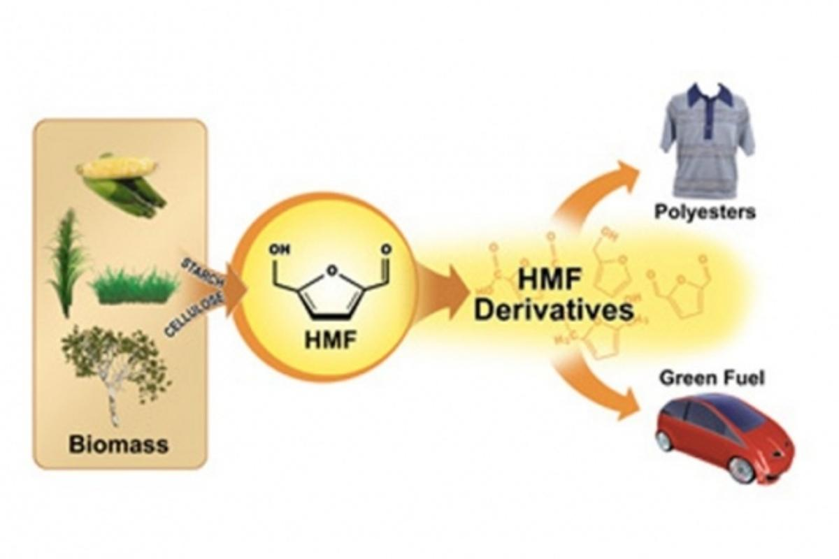 The simplified process converting biomass to HMF