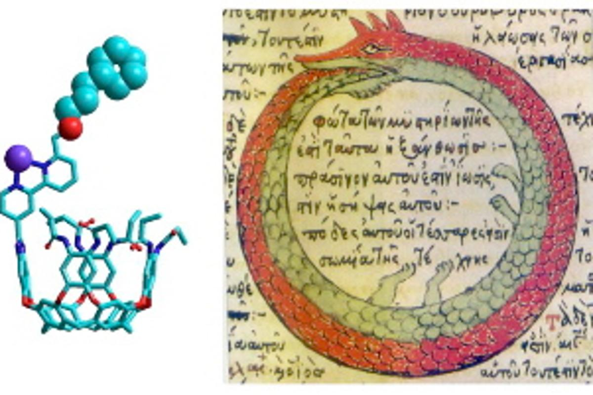The ouroborand molecule and its namesake, the Ouroborus