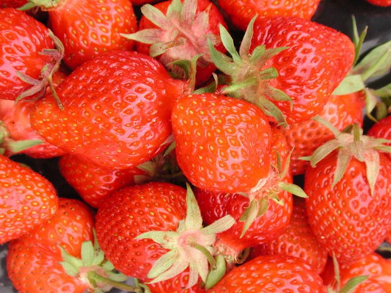 Scientists at the UK's National Physical Laboratory have developed technology that can identify ripe strawberries in the field, which could lead to robotic strawberry pickers