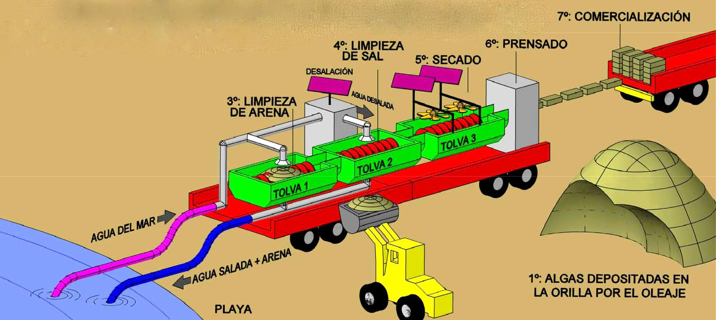 A diagram of the seaweed-treating system