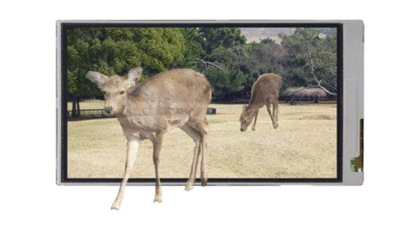 Sharp's new 3D display doesn't require the use of special glasses
