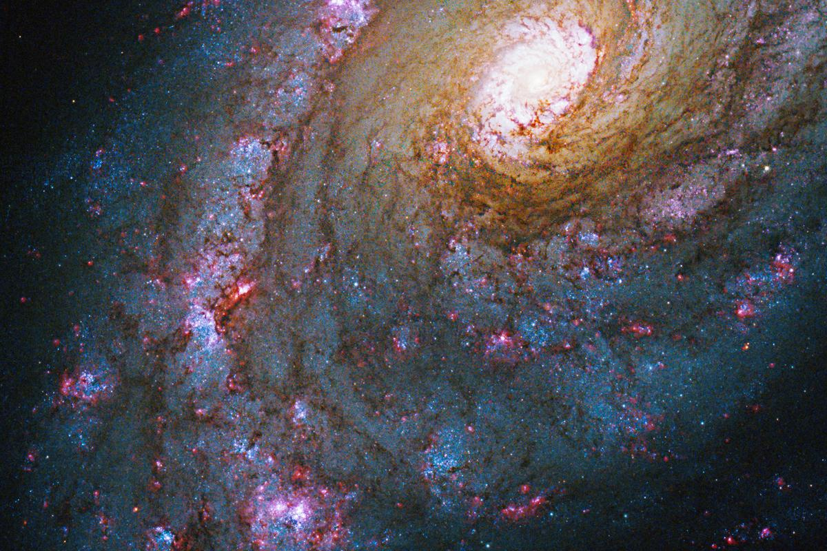 An image of Caldwell 45 (NGC 5248), a spiral galaxy located some 59 million light-years from Earth in the constellation Bootes