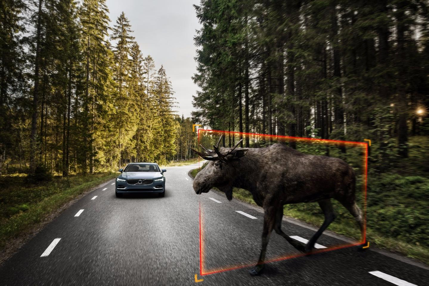 Thestandard radar/camera-based detectionsystem can detect large animals, warn the driver and self-brake