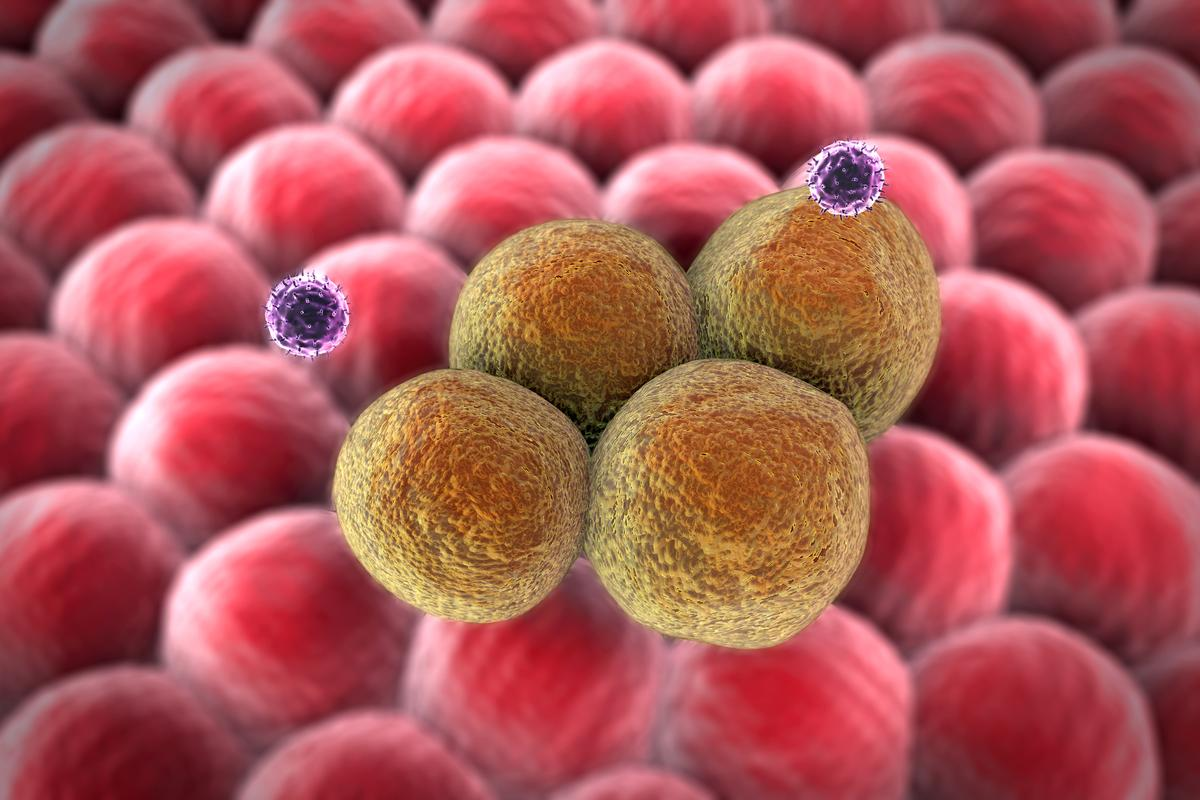"""Nano-factory"" synthetic cells have been developed that produce cancer-killing drugs from inside the tumor"