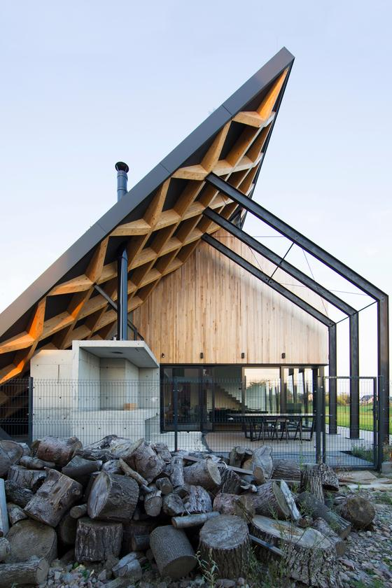 House behind the Roof features extensive use of wood which is untreated and meant to age over time