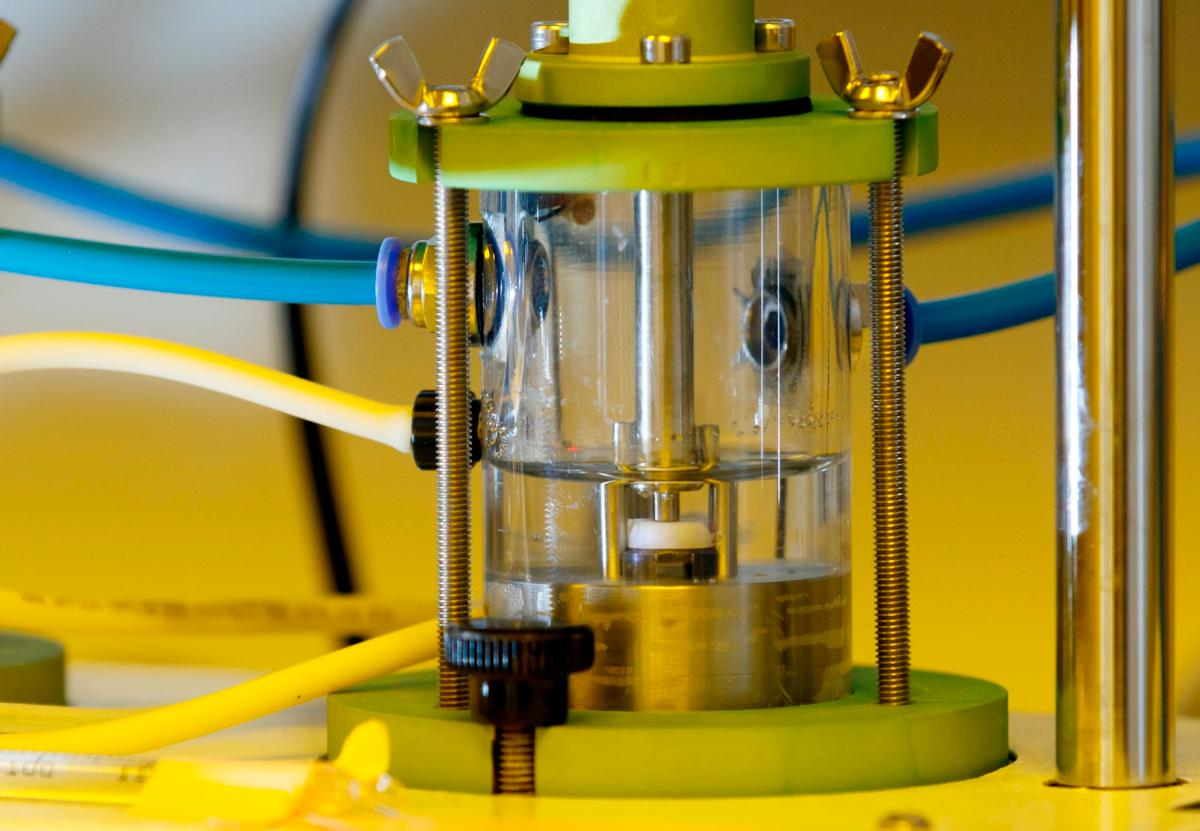 A bioreactor is used to simulate an oral environment, in which a slice of tooth has been placed