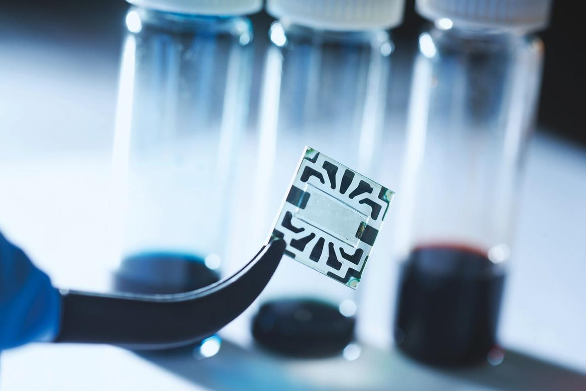 MIT's transparent solar cell, made with graphene electrodes, is seen in the center of this sample: the patterns around the edges are metal contacts for attaching probes to measure performance
