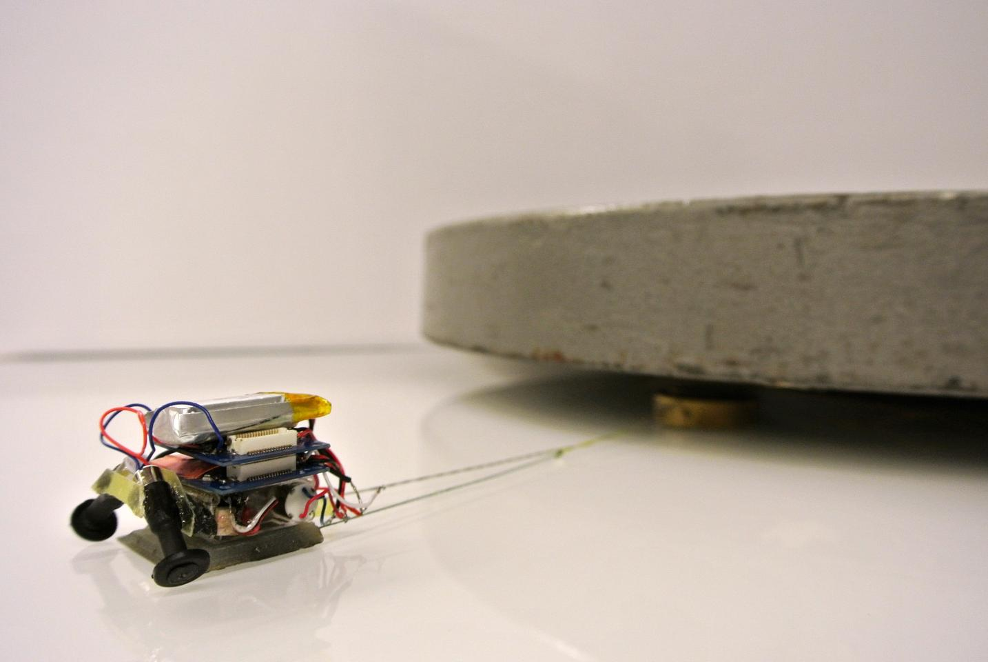The robots use a smart adhesive surface to carry many times their own weight