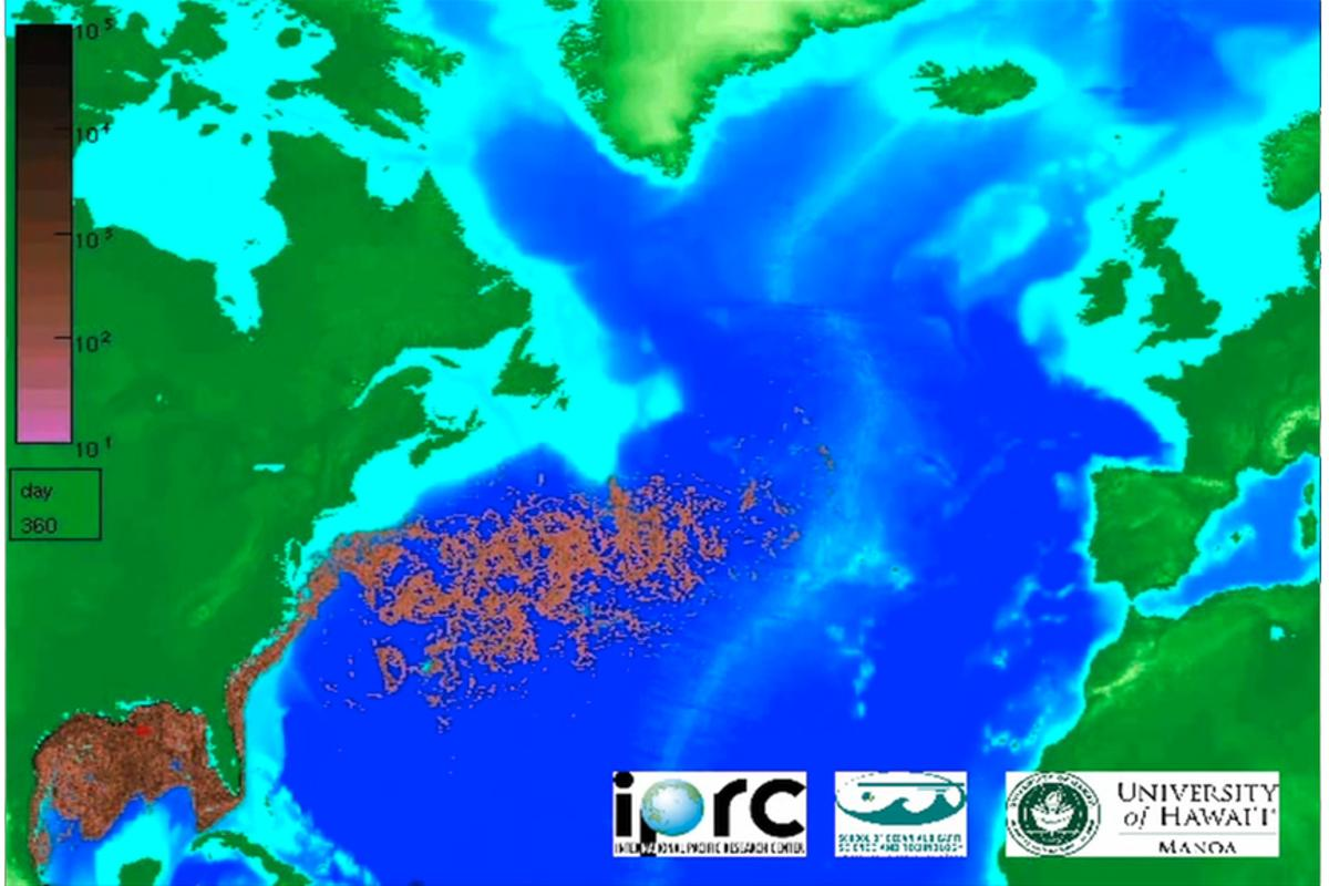 The computer animation's prediction of the oil spill after 360 days - April 15 2011 (Image: IPRC/SOEST/UHM)