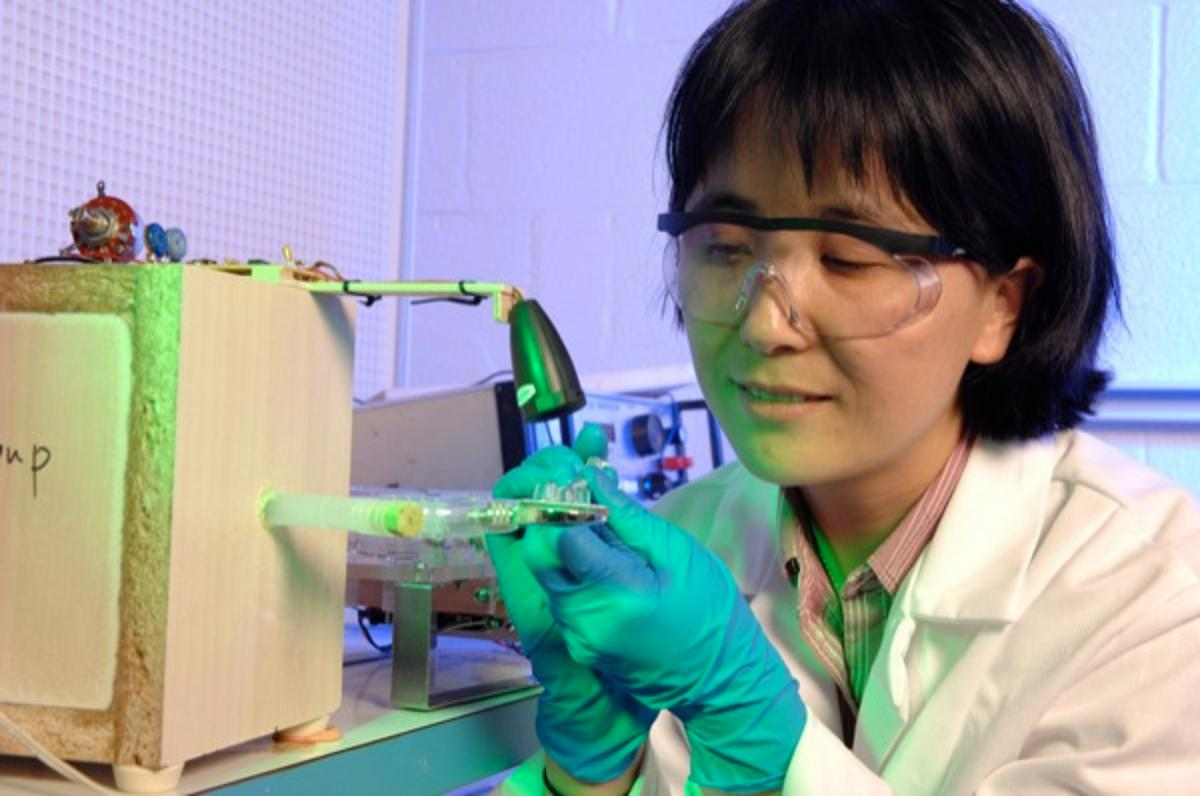 Lead scientist Xinqiao Jia works with the gel