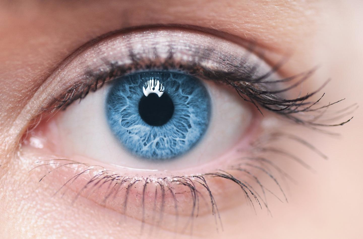 Scientists have proved that the gene editing tool CRISPR is effective at combating retinitis pigmentosa in patient-derived stem cells
