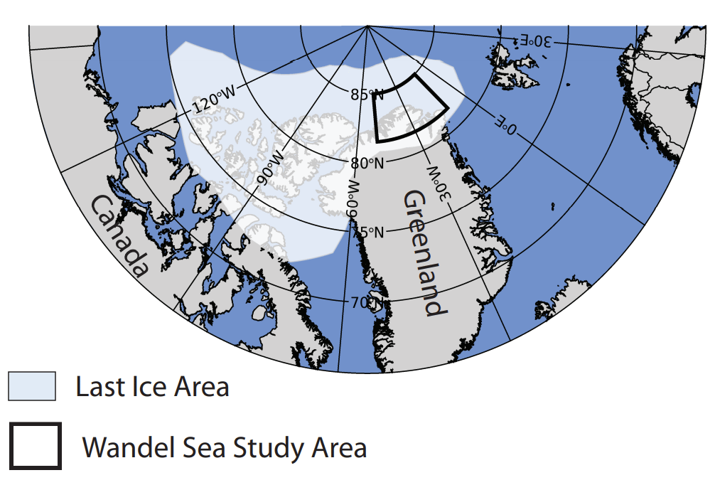 """A new study has uncovered record low ice levels in the Wandel Sea, inside what's known as the """"Last Ice Area"""" of the Arctic Ocean"""