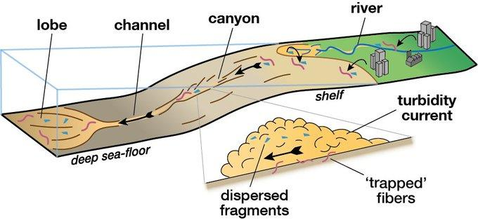 A diagram illustrating the flow of sediment and microplastic waste through the ocean