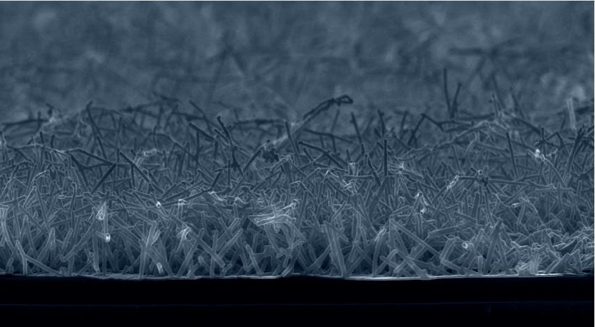"Tiny ""metallic grass"" could have big implications for energy production (Image: Drexel University)"