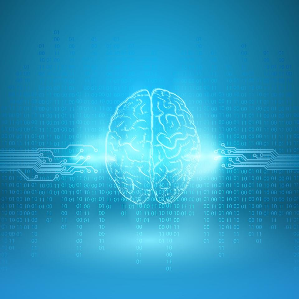 Microsoft has conducted a study of how living in the digital age affects the manner in which our brains function
