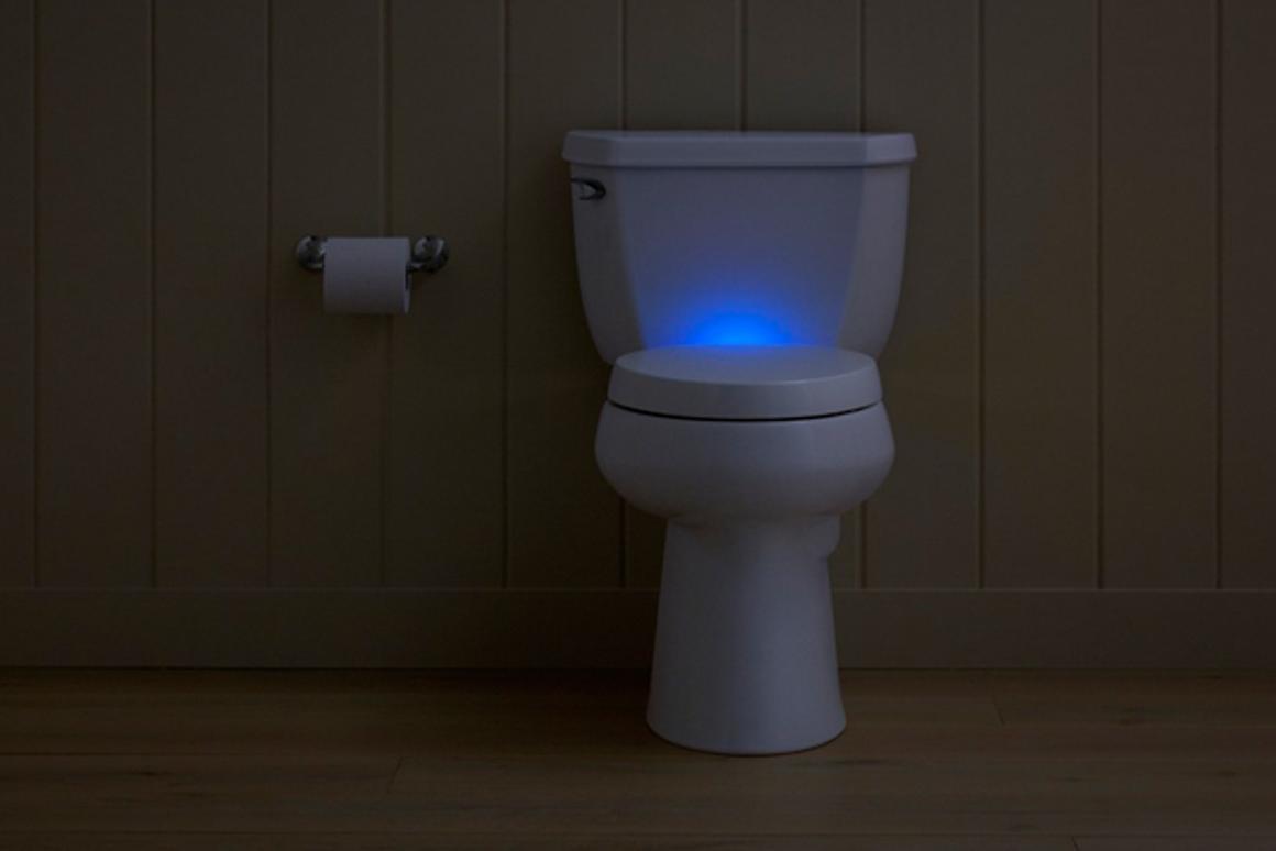 Enjoyable Kohlers New Toilet Seat De Stinks The Bathroom But May Theyellowbook Wood Chair Design Ideas Theyellowbookinfo