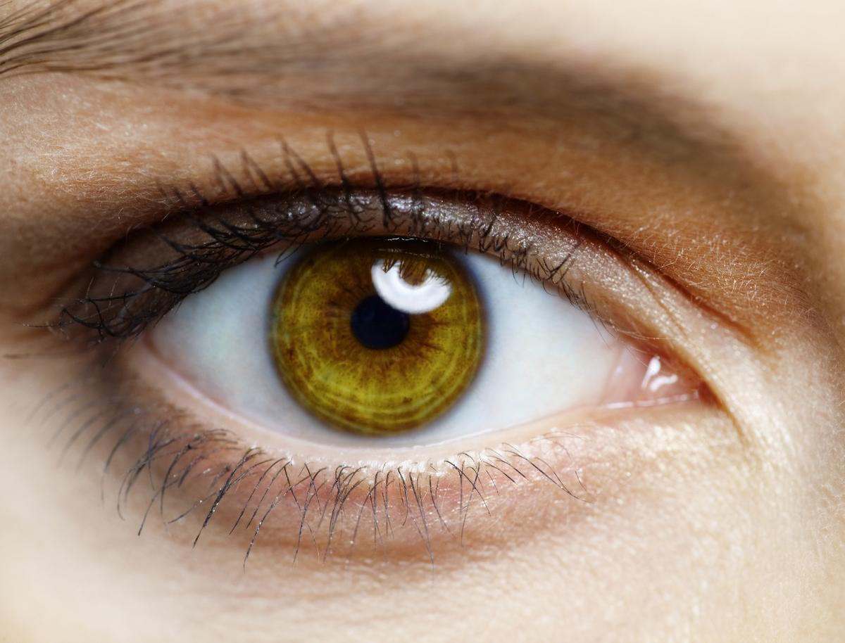 A genetic matching technique couldhelp restore eyesight in patients with diseases such as macular degeneration