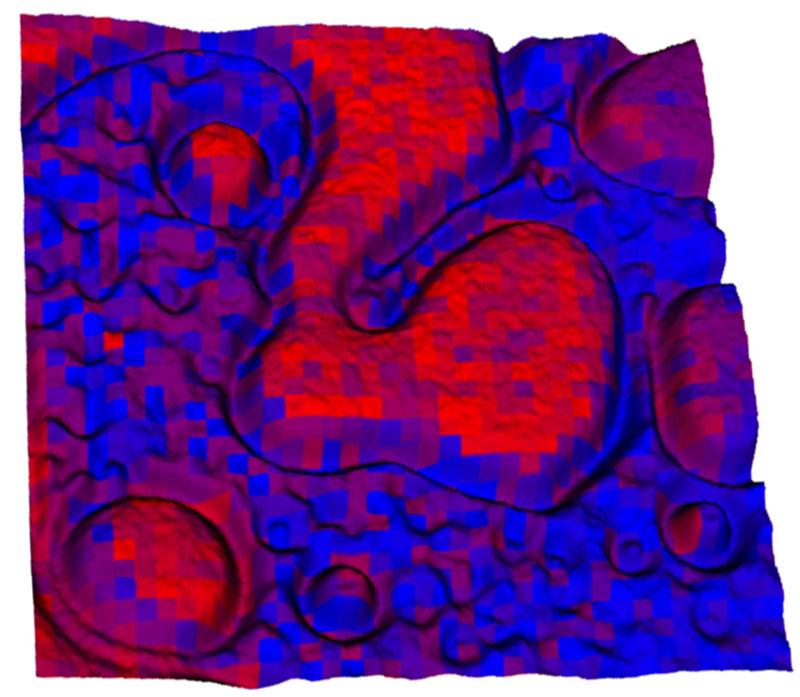 A hybrid 3-D optical microscope – mass spectrometry map showing optical brightness (height) and chemical distribution of poly(2vinylpyridine) (red) and poly(N-vinylcarbazole) (blue) signals of a 20 micron-by-20 micron area of a polymer blend