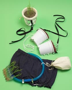 The Rice Bra kit includes seeds, soil, pants and belt, along with rice planter bra cups