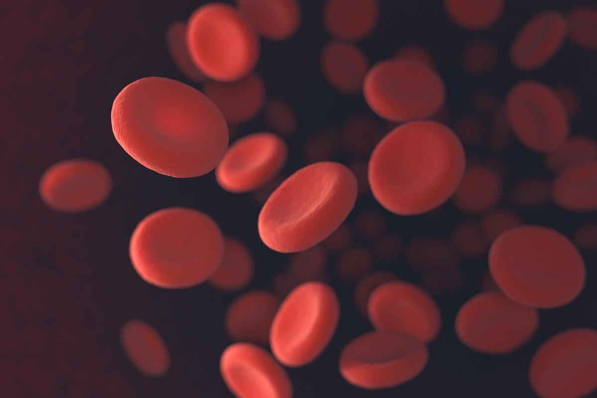 Researchers have created artificial red blood cells with more potential capabilities than real ones