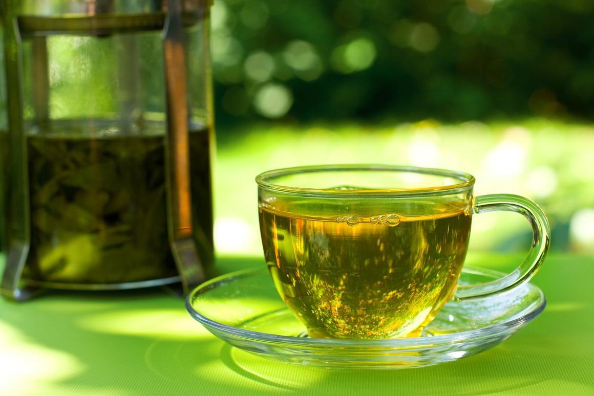 Green tea – chock full of epigallocatechin-3-gallate