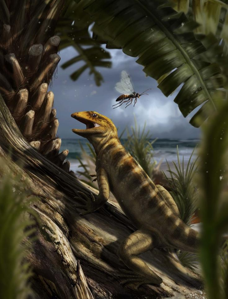 Recreation of life in the Dolomites 240 million years ago, with the oldest lizard known to man Megachirella wachtleri, going about its business