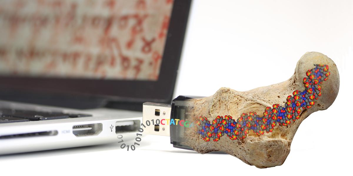 In the search for ways to store data permanently, ETH researchers have been inspired by fossils (Photo: Philipp Stössel/ETH Zurich)