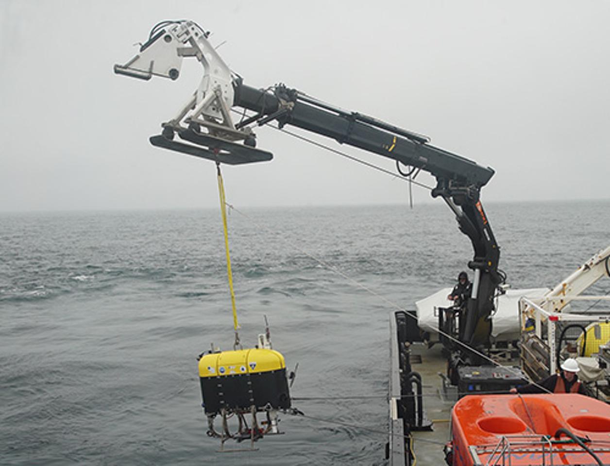Launching theMesobot