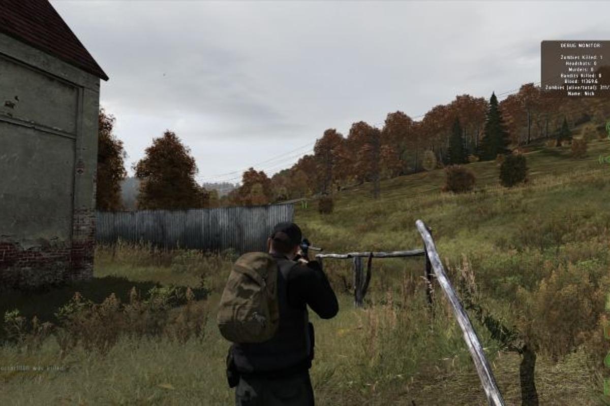ArmA II zombiepocalypse mod DayZ has its sights set on a a fully-fledged standalone title