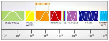 The terahertz band exists between micro waves and infrared on the spectrum