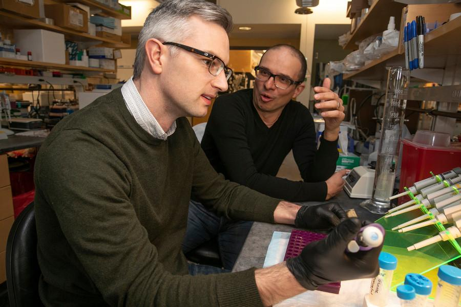 Cameron McAlpine (left) and Filip Swirsk, researchers on the new study