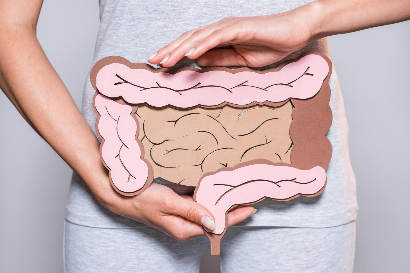 Two gut bacteria metabolites, known as secondary bile acids, could help reduce intestinal inflammation