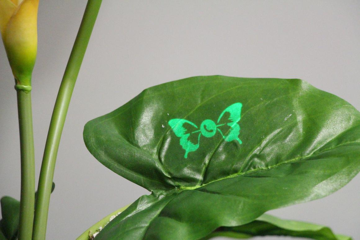 Custom printed displays can make plants smarter, too (Image credit: Saarland University)